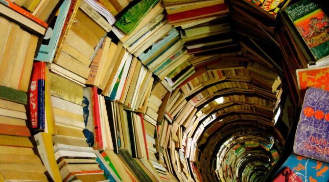 2. A Malos Libros, Mente Enferma